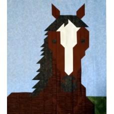 Sheri's Horse